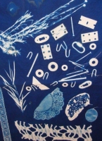 Taster - Cyanotype printing - One Day